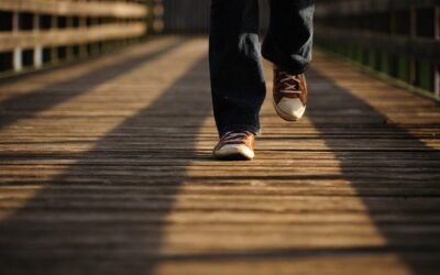 Should Gait Speed Be Considered A Vital Sign?